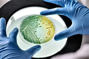ce medicamente se pot hrăni cu viermi telespectator al tratamentului de helmint