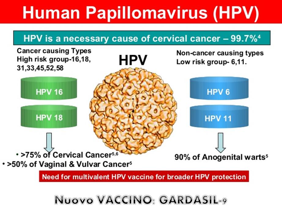 papillomavirus vph 16 laryngeal hpv symptoms