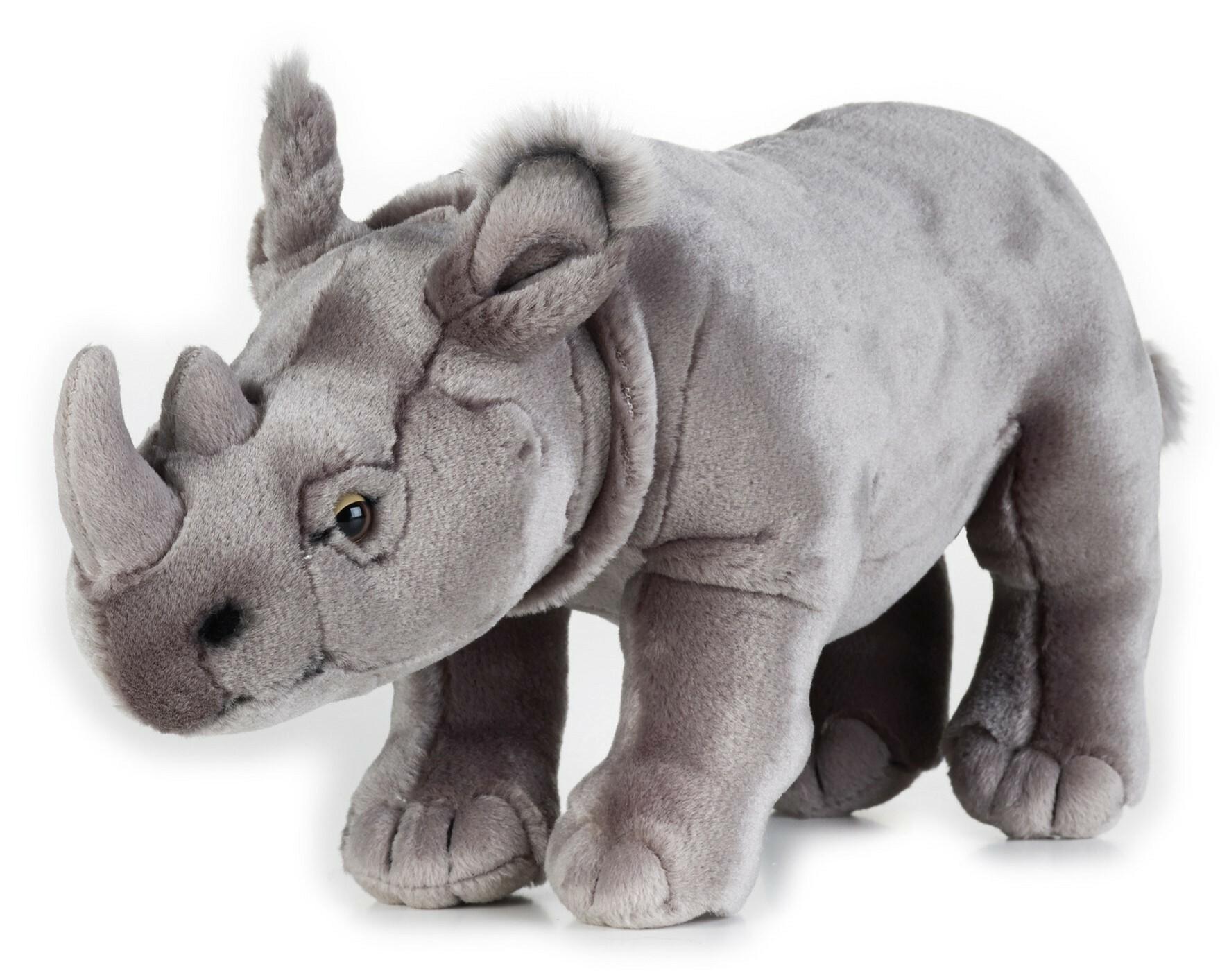 Despre Elegii pentru noul rinocer, astăzi, la Revista Literară Radio