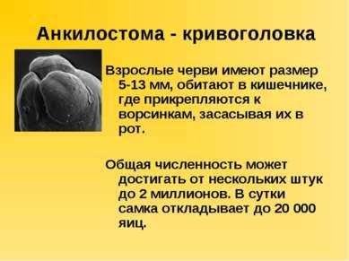 ipoteza de igienă a helmintelor