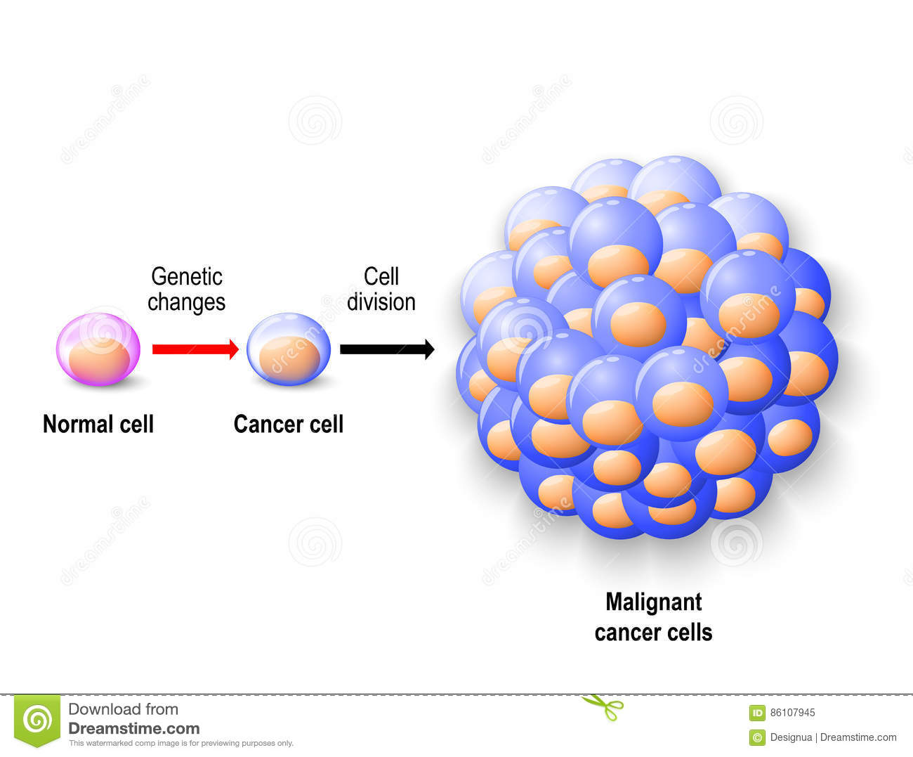 what causes hpv zodia cancerului geneza
