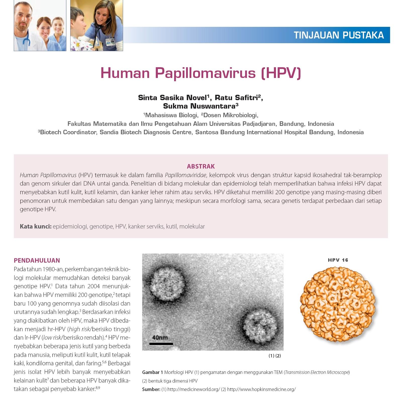 hpv genotipe adalah papilomatoza într-un tratament pentru copii