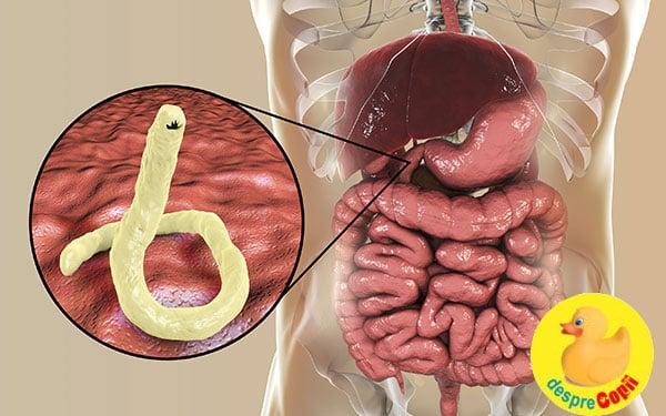tratamentul parazitului pe stomacul gol