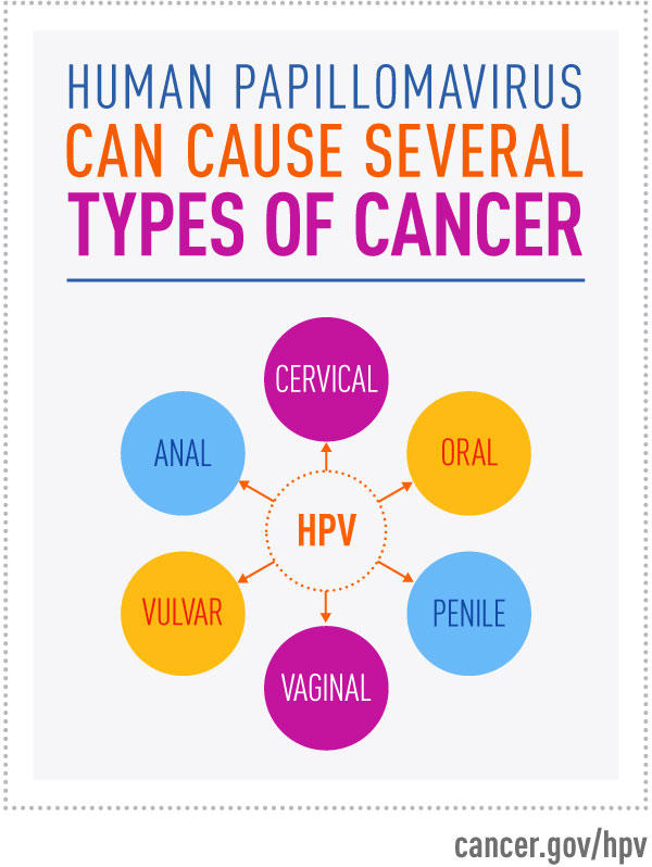 hpv high risk group ductal papilloma means