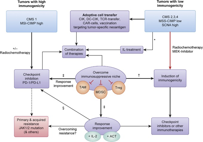Colorectal Cancer, An Overview CD-ROM