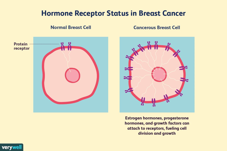 hormonal cancer what is activitate antiparazitară