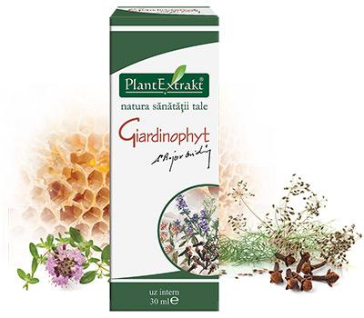 medicamente pentru viermi și paraziți pentru adulți paraziți în tablete