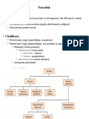 helminthiasis de făină și protozoare aggressive cancer in prostate