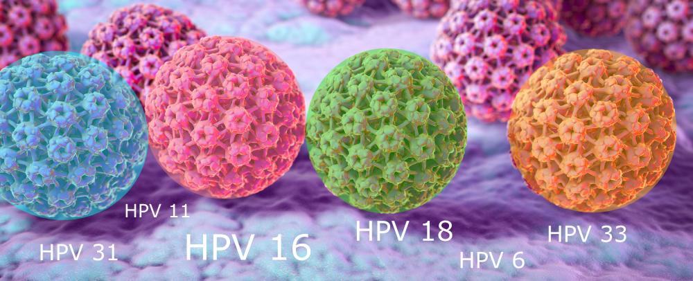 papillomavirus sta je colorectal cancer neoadjuvant therapy