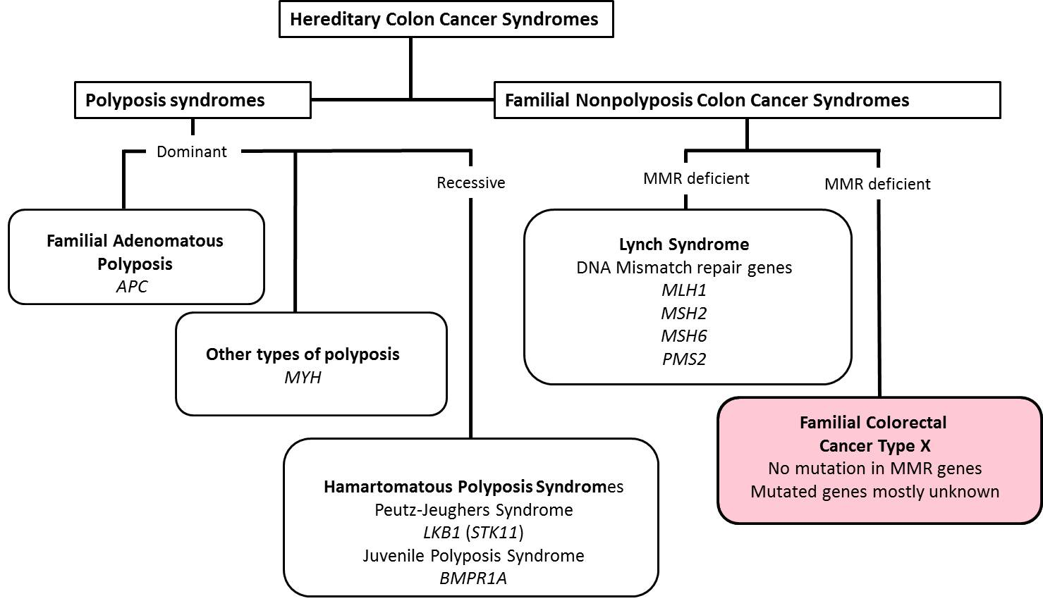 cancer colon types