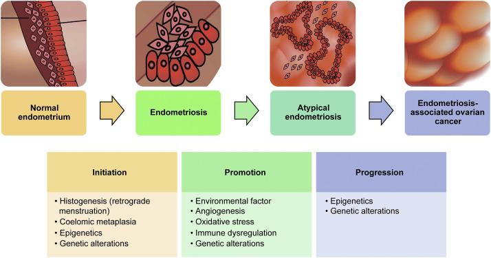 cancerul mamar etiologie tratamentul paraziților creierului