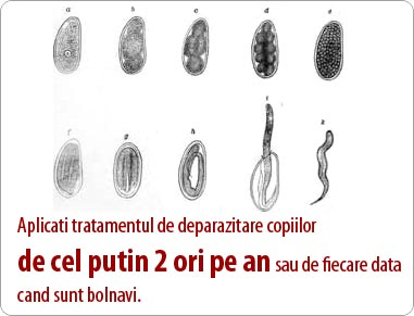 tipuri de viermi și tratament