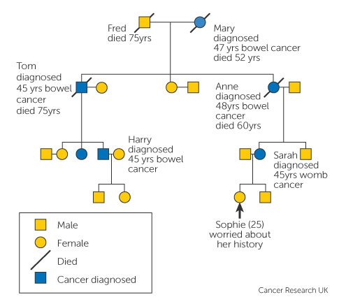 familial cancer if