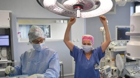 Operation suite papillomavirus