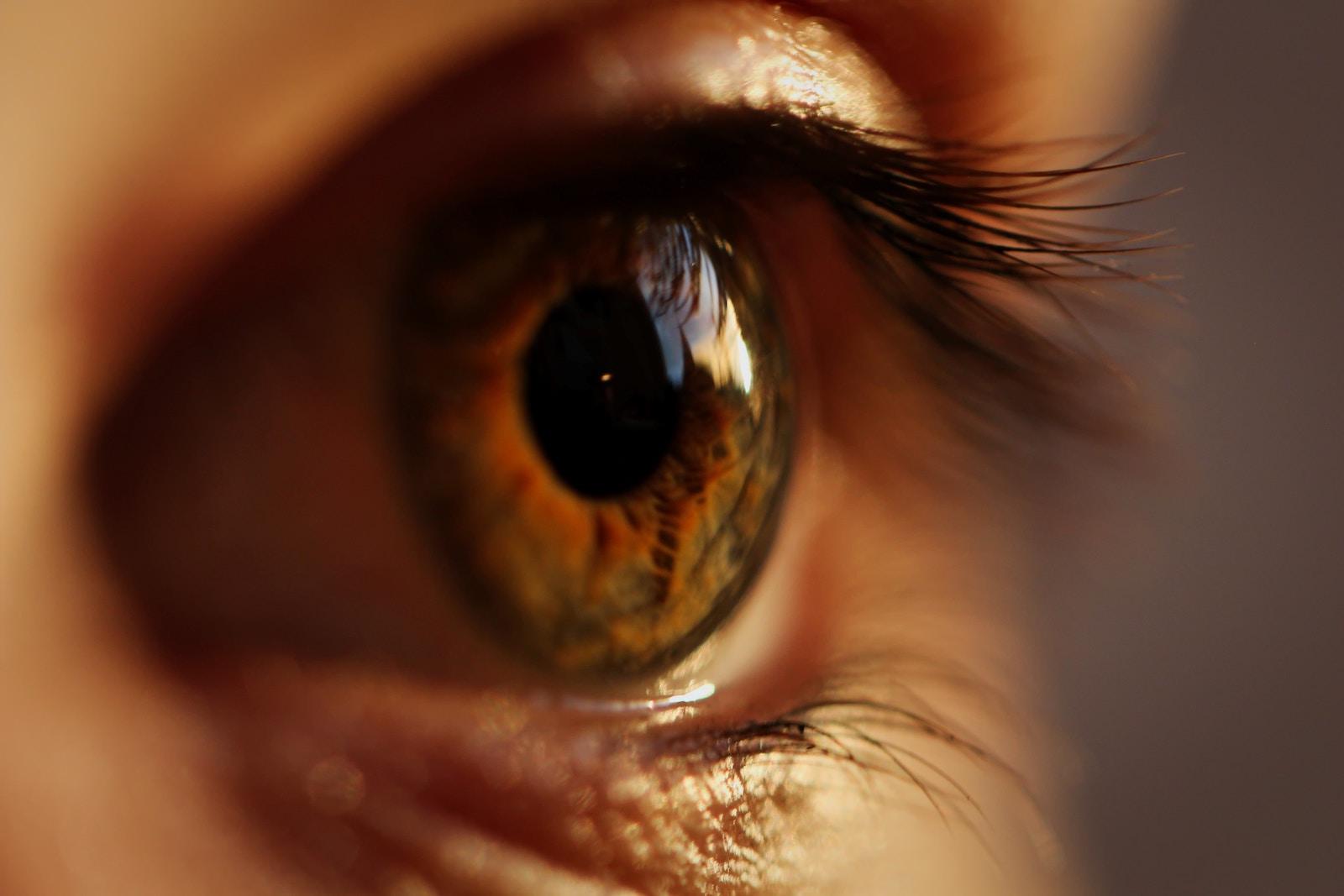 paraziti tratamentul ochilor să pumnează copilul cât mai repede