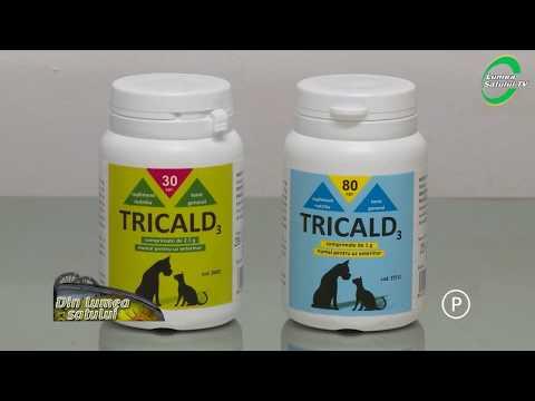 pastile bune din viermele rotund medicamente antihelmintice cu spectru larg pentru oameni
