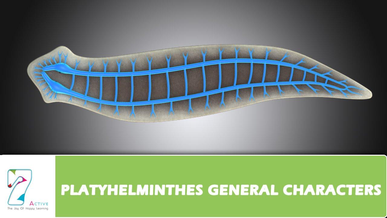 helminth infection during pregnancy detoxifiere organism retete