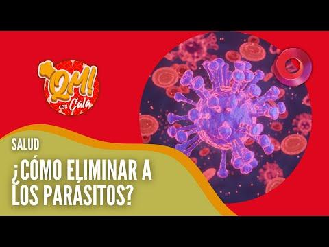 paraziti stiuca