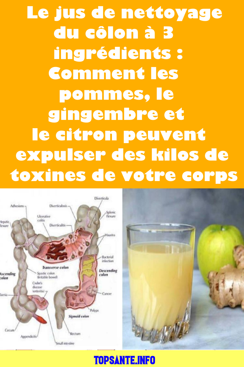 toxine jus de pomme papillomatosis atau kutil pada sapi