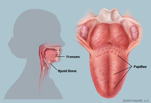 tratament cu helmintiază în 2 ani