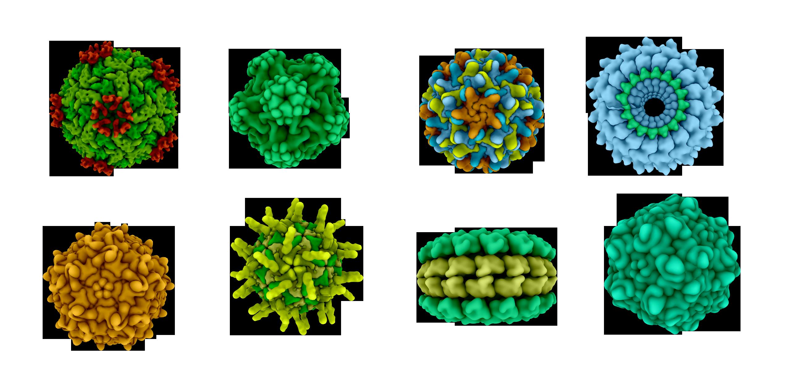 Ar putea o vreme mai caldă să frâneze răspândirea coronavirusului?