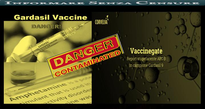 papilloma virus vaccino vivo