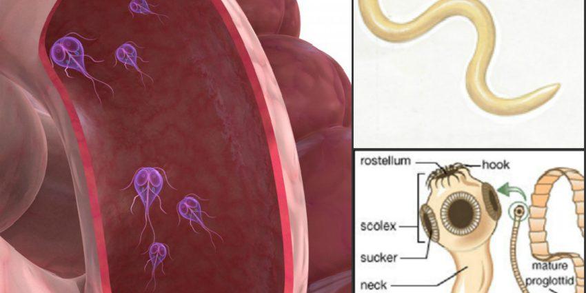 hpv tongue nhs tratamentul viermilor la copii și femei însărcinate