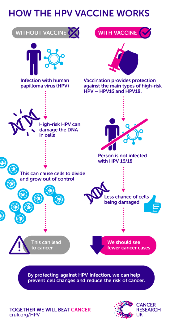 HPV - Definiția și sinonimele HPV în dicționarul Engleză What is a wart virus infection