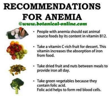 anemie vegan