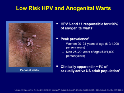 hpv warts low risk