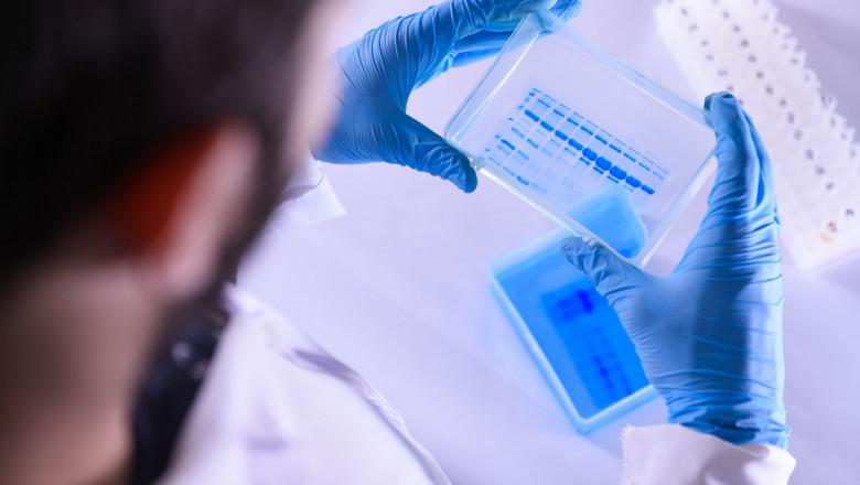 medicament împotriva nematodei umane cancer peritoneal avanzado