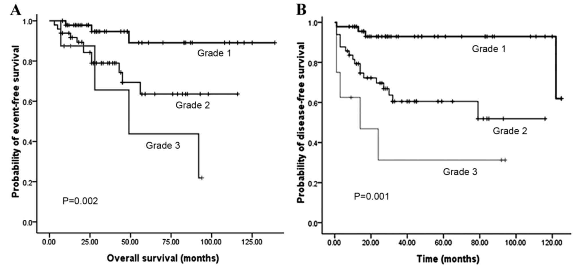 neuroendocrine cancer prognosis