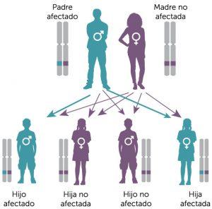 por que cancer es hereditario