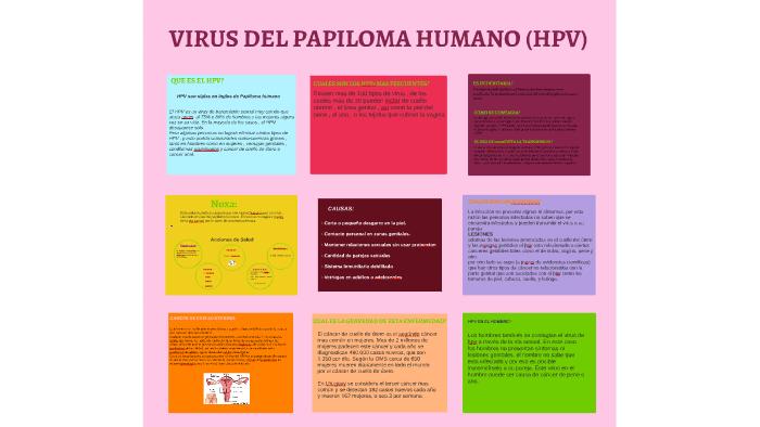 virus del papiloma noxa human papilloma virus in neonates